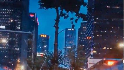 Ідеальне відображення: мережу підкорило незвичайне відео в калюжі - фото 1