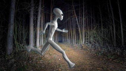 Дівчинка з США детально розповіла про зустріч з інопланетянином - фото 1