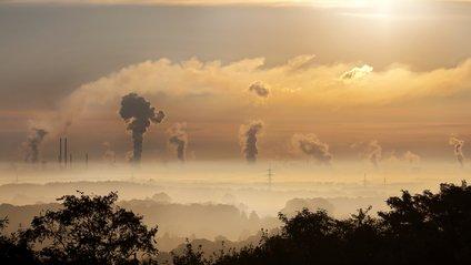 Діти страждають від вихлопних газів значно сильніше, ніж дорослі - фото 1