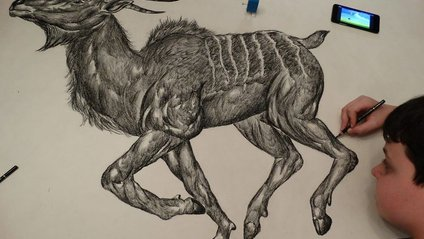 Підліток з Сербії проілюстрував енциклопедію тварин - фото 1