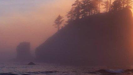 Національний парк Олімпік у США в полоні туману: казкові фото - фото 1