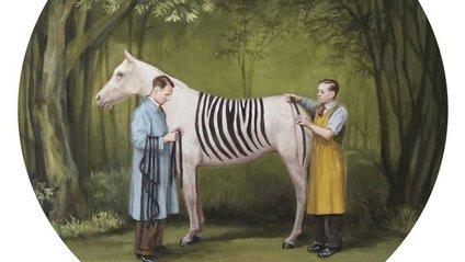 Художниця показує поведінку людей у сатиричних малюнках - фото 1