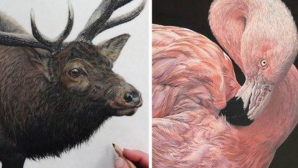 Художниця малює гіперреалістичних тварин, від яких перехоплює дух - фото 1