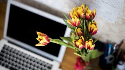 Як користуватися ноутбуком в спекотні дні: прості поради - фото 1