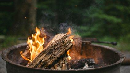 В Україні оголошено пожежну небезпеку - фото 1