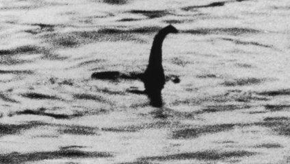 Знімок дійсно дозволяє побачити силует дивної істоти - фото 1