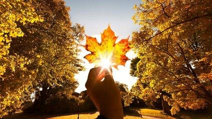15 жовтня на частині території країни буде хмарно - фото 1