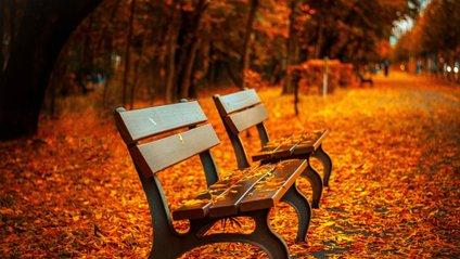 Погода на вихідні, 27-28 жовтня - фото 1