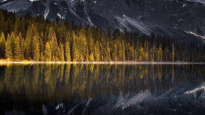 Захопливі пригоди світом в об'єктиві Таля Варді - фото 1