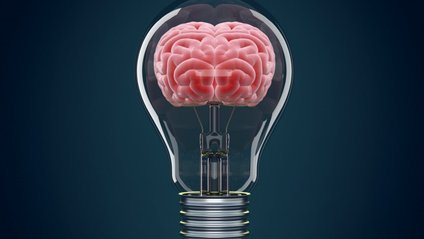На високий рівень IQ впливає також безлад - фото 1