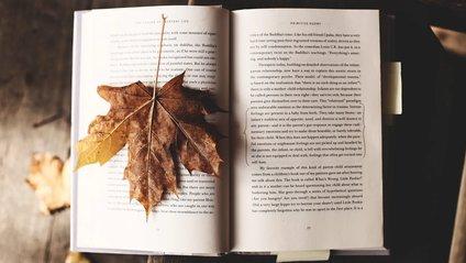 Книги про пригоди й авантюри - фото 1