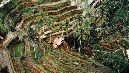 Казкові пейзажі від Ллойда Еванса - фото 1