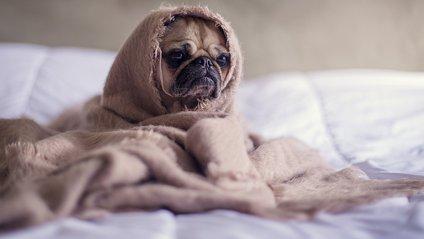 Як прокидатися зранку без стресу - фото 1