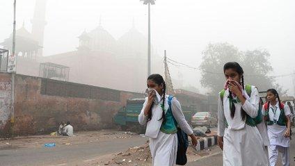 У Делі рівень забруднення повітря перевищений у 25 разів - фото 1