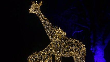 У Лондоні Різдво відзначатимуть 25 грудня - фото 1