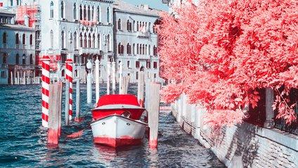 Незвичайний рожевий світ італійського фотографа - фото 1