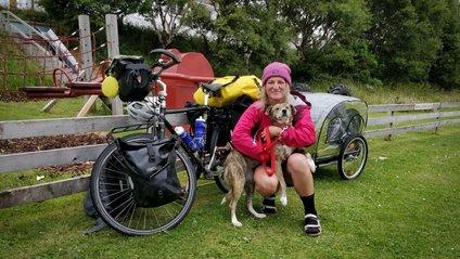 Жінка мандрує для того, щоб рятувати бездомних тварин - фото 1