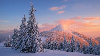 Висота снігового покриву у Карпатах становить 29 см - фото 1