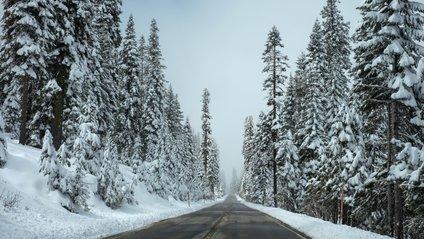 Погода на сьогодні 12 грудня в Україні - фото 1
