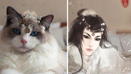 Коти стали персонажами аніме - фото 1