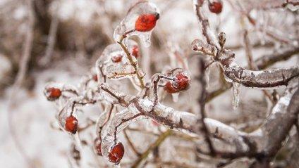 Крижана зима в Румунії - фото 1