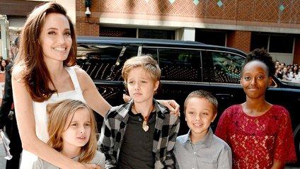 У повному складі сім'ю можна спостерігати вкрай рідко - фото 1