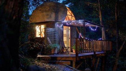Хижа в лісі стала найпопулярнішим помешканням на Airbnb - фото 1