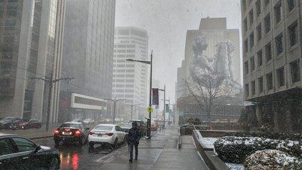 Торонто засипало снігом - фото 1