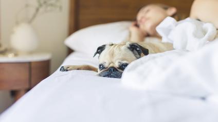 Як сон, менший на 16 хвилин, впливає на вашу роботу - фото 1