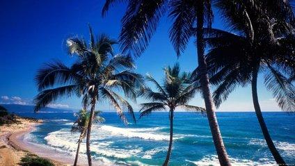 Відпочинок у Домінікані - фото 1