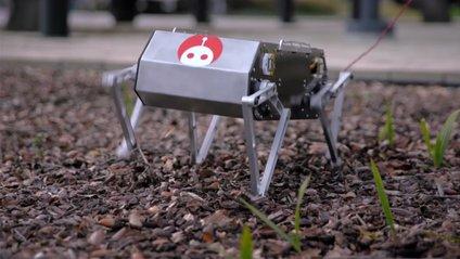 Робот Doggo - фото 1