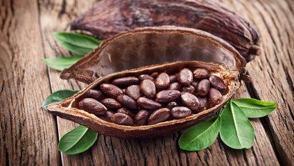 Какао - фото 1