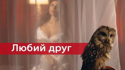 Прем'єра кліпу Соловій – Любий друг - фото 1