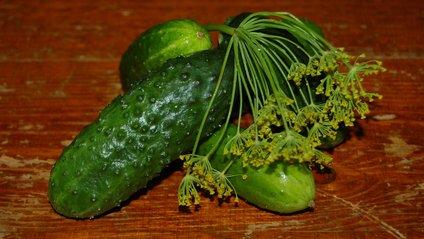 Малосольні огірки - фото 1