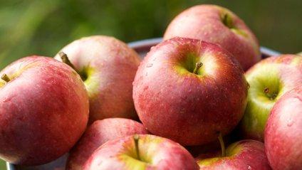 Ось чому яблука слід їсти зі шкіркою - фото 1