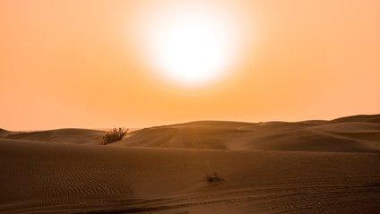 Червень став найспекотнішим у світі - фото 1