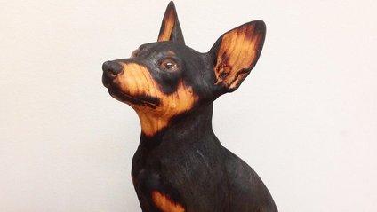 Іспанець вирізає з дерева реалістичних тварин: вражаючі фото - фото 1