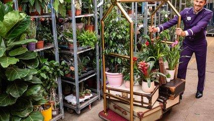 Рослини доглядатимуть на вищому рівні - фото 1