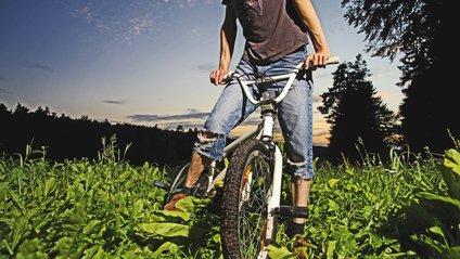 Віддайте перевагу фізичні активності десь в лісі або парку - фото 1