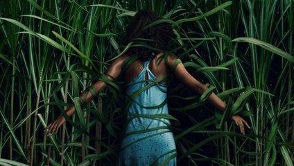 У високій траві, трейлер фільму онлайн - фото 1
