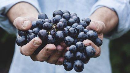 як приготувати варення з винограду - фото 1