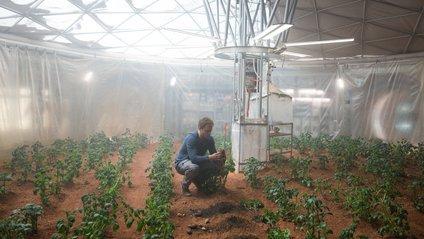 Марсіанський ґрунт дав кращі плоди, ніж місячний - фото 1