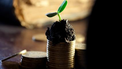 Бюджет 2020: якою буде мінімалка, прожитковий мінімум і курс долара в Україні - фото 1