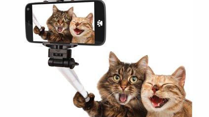 Як правильно фотографуватися для Instagram - фото 1