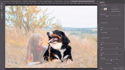 Тепер набагато простіше: у Photoshop додали інтелектуальне виділення потрібних об'єктів - фото 1