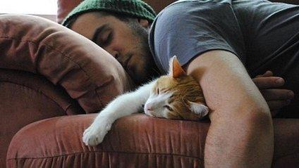 Кішка - фото 1