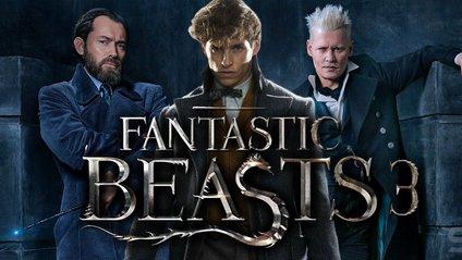 Фантастичні звірі 3: перші деталі - фото 1