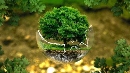 Цей крок дозволить врятувати планету - фото 1
