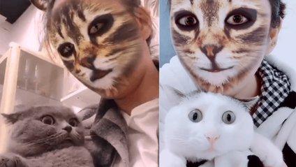 Флешмоб з котами - фото 1