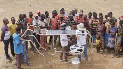 Сонячна панель Solar Cow - фото 1